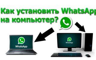 Как зарегистрироваться в ватсапе: с телефона и на компьютере
