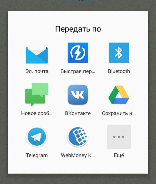 Как скачать с whatsapp фото и видео: пошаговая инструкция